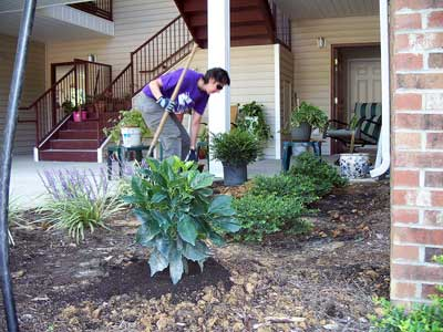 CASA volunteer plants shrubs at Oak Hill Apartments in Raleigh.