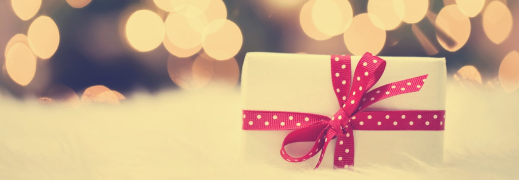 A holiday gift, featured in a blog post about ways to give holiday donations.