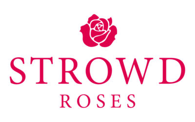 November Partner of the Month – Strowd Roses